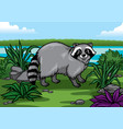 cartoon racoon in the nature vector image vector image