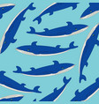 fish whale pattern vector image vector image