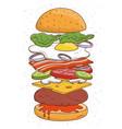 hamburger concept ingredients bun salad tomato vector image