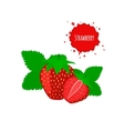 Juicy strawberry with leaves isolated on white vector image vector image