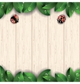 Ladybugs and green leaves on wooden background vector image vector image
