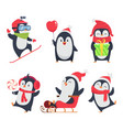 penguin characters cartoon winter vector image vector image