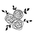 roses with leaves flowers decorative items for vector image