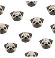 seamless pattern with pug heads on white vector image