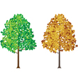 seasonal tree vector image