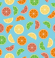 Colorful citrus seamless pattern vector image vector image