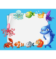 Frame design with sea animals background vector image