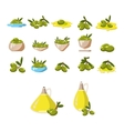 Olives icons set with tree oil branch leaf vector image vector image
