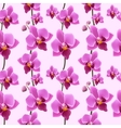 Orchid blossom seamless pattern vector image vector image