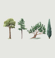 watercolor tree forest oak fir birch thuja vector image vector image