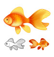 3d of goldfishes isolated on white
