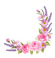 beautiful pink roses and lavender flowers on white vector image vector image