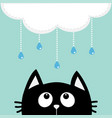black cat looking up to cloud with hanging vector image