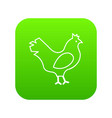 chicken icon green vector image
