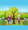 elderly couple people work in farm garden senior vector image vector image