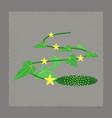 flat shading style plant cucumis vector image