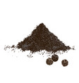 hand drawn heap ground pepper and three vector image vector image
