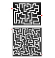 Two mazes vector image