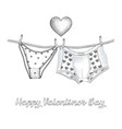 womens panties and mens boxer briefs in the vector image