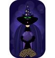 magician cat vector image