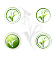 Calla Lily Flower Icon vector image