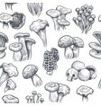 mushroom seamless pattern sketch various vector image vector image
