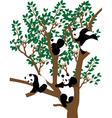 panda on tree vector image