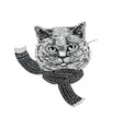 cartoon fluffy cat in knitted funny scarf vector image