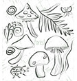 coloring page with mushrooms and forest flora vector image vector image