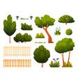 garden park backyard trees fence and bushes icon vector image