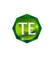 letter te diamond vector image vector image