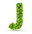 Letter J alphabet of green leaves vector image