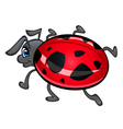 Cartoon ladybug vector image vector image