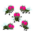 collection of cute little cartoon flies vector image