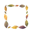 watercolor wreath with autumn leaves vector image vector image