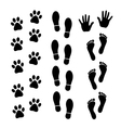 Set of trace vector image