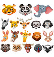 different faces of wild animals vector image