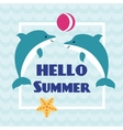 Hello Summer card with playing dolphins vector image vector image