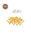 Millet of 10 EPS vector image