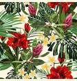 tropical red lilies plumeria and protea flowers vector image vector image