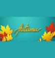 autumn seasonal typographic vector image vector image