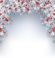 Holiday Background with Silver Fir Twigs and Holly vector image vector image