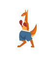 kangaroo boxer with boxing gloves sportive vector image vector image