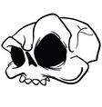 skull5black vector image vector image