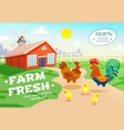 chicken farm advertising background vector image vector image