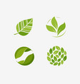 green leaf logo leaves nature ecology symbol or vector image