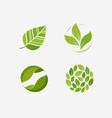 green leaf logo leaves nature ecology symbol or vector image