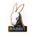 rabbit on a white background vector image vector image