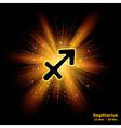 sagittarius luminous vector image vector image