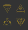 set hipster vintage labels logotypes insignias vector image